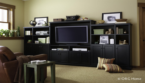 Home Entertainment Cabinet and Shelves Organizer